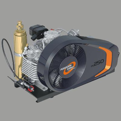 PE 250 TE New model